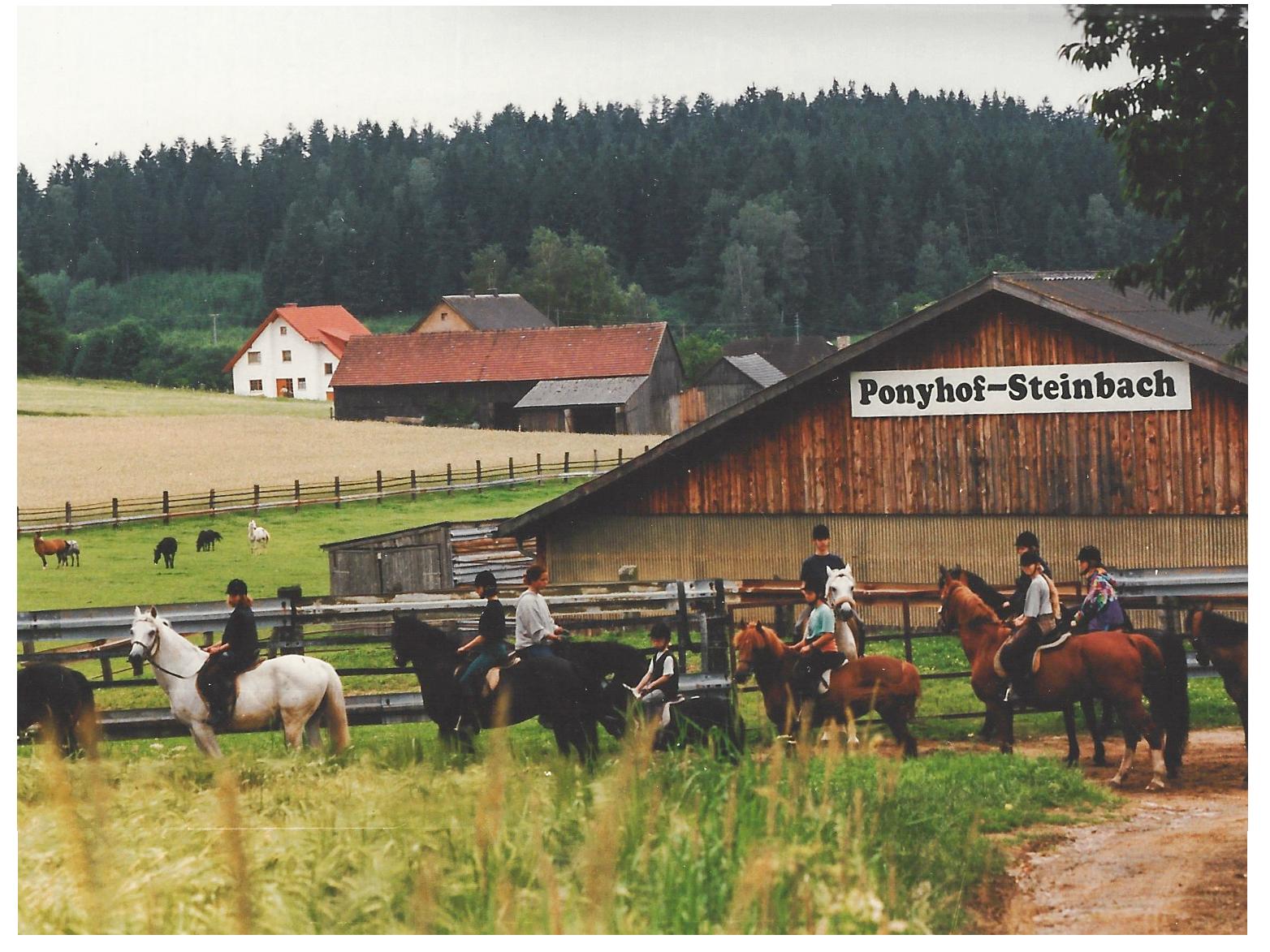 Ponyhof Steinbach - Pferdeurlaub in Franken - Eine Luftaufnahme.